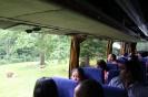 Longleat Safari 2012_6